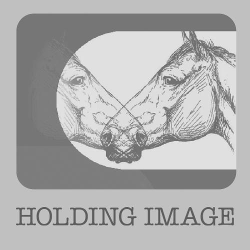 Holding-image