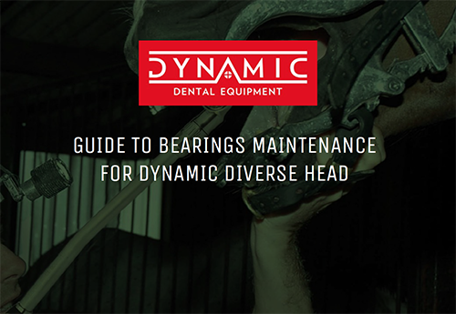 GUIDE TO BEARINGS MAINTENANCE FOR DYNAMIC DIVERSE HEAD
