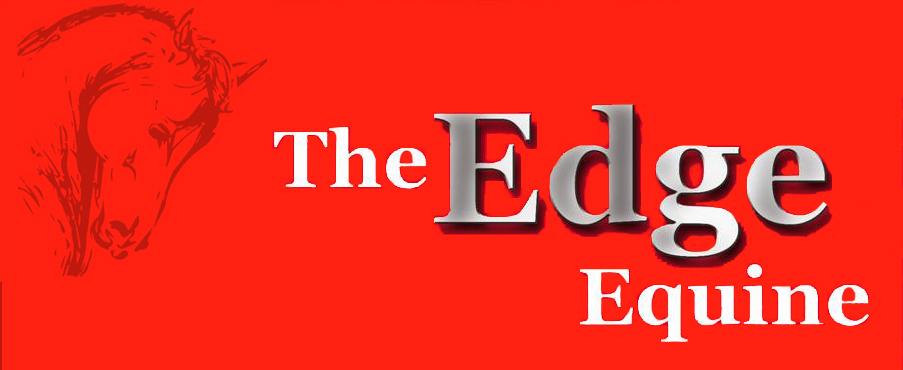 TEE.logo_offst (2)